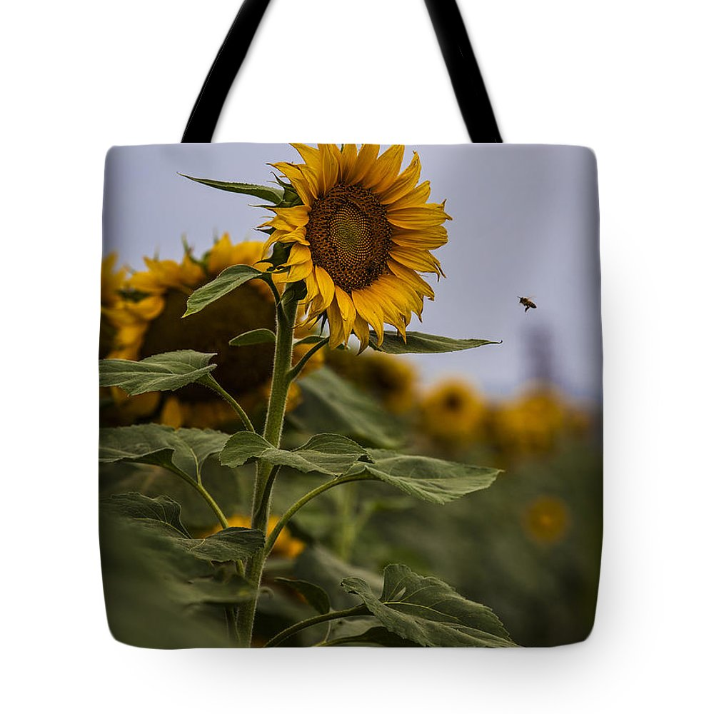 Landscapes Tote Bag featuring the photograph Busy Bee by Amber Kresge