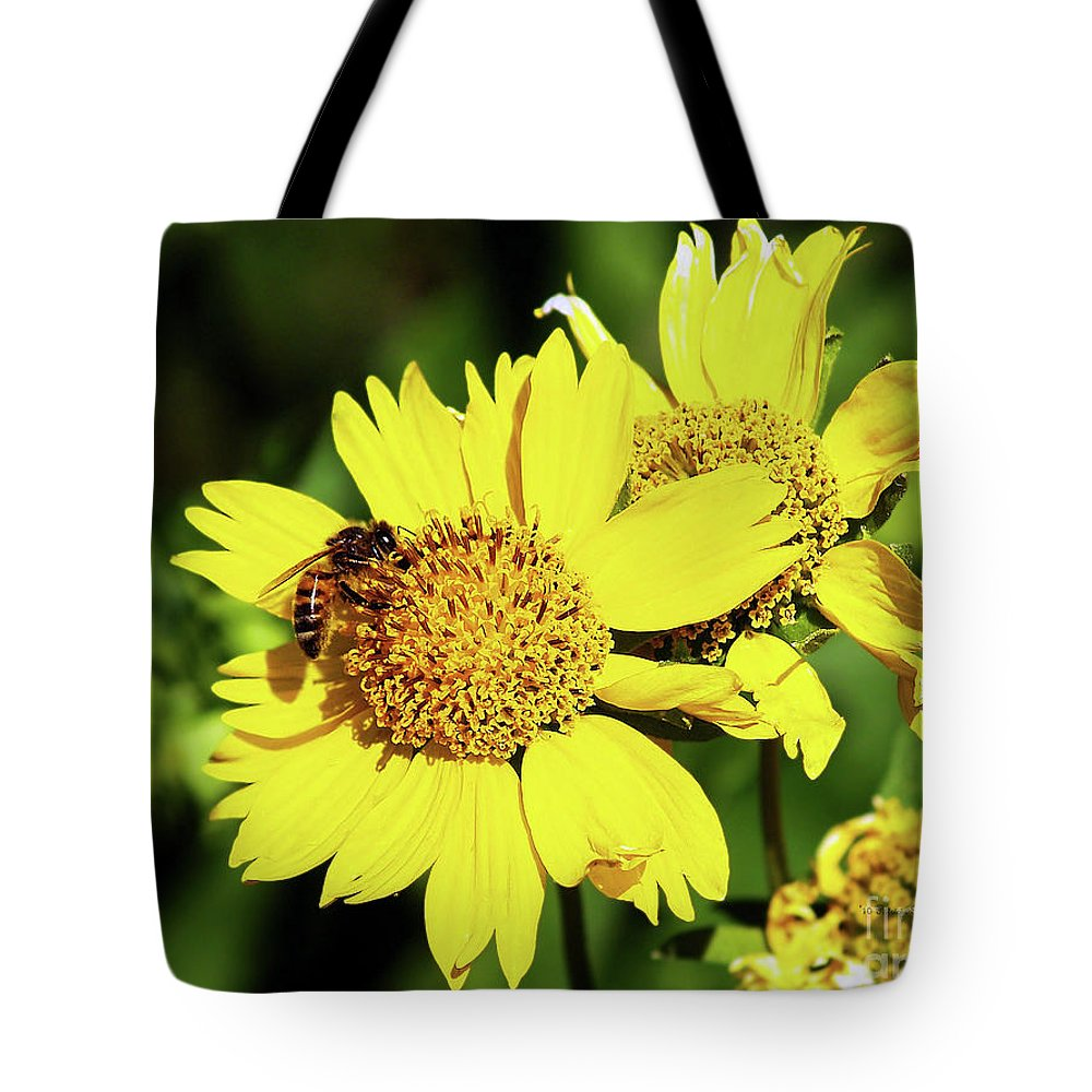 Bee Photography Tote Bag featuring the photograph Busy Bee by Patricia Griffin Brett