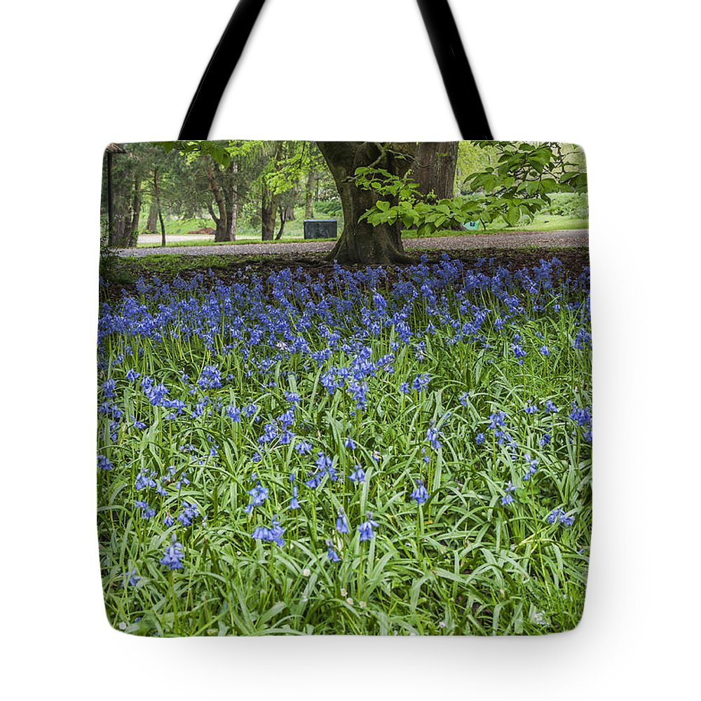 Bluebells Tote Bag featuring the photograph Bute Park Bluebells by Steve Purnell