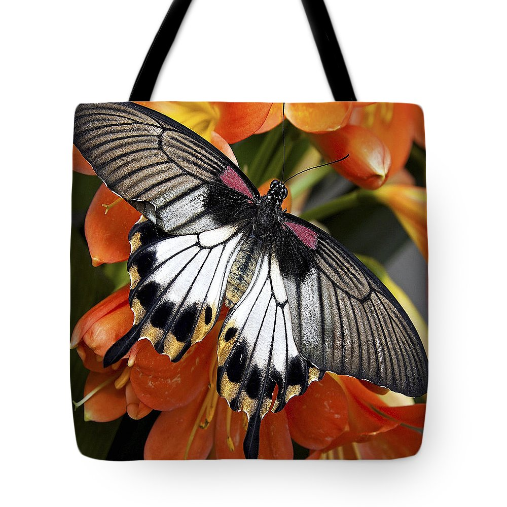 Butterfly Tote Bag featuring the photograph Butterfly 006 by Ingrid Smith-Johnsen