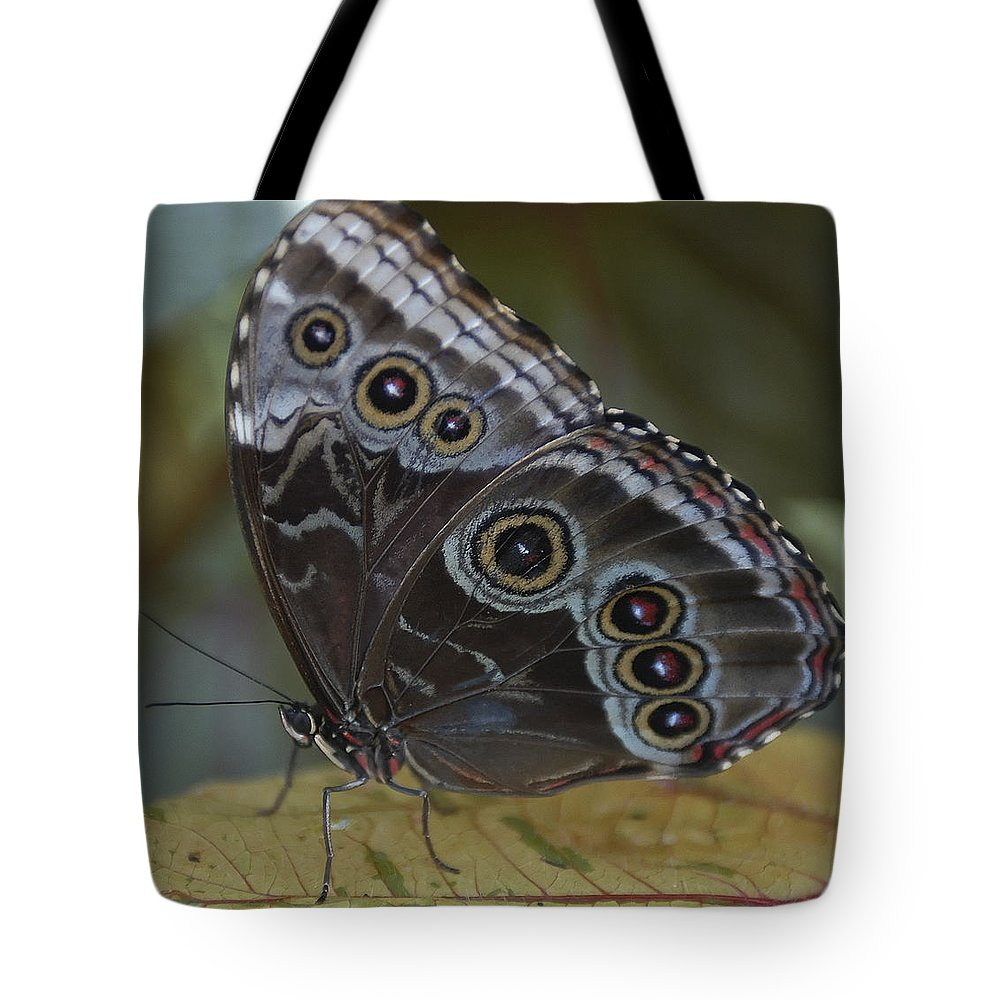 Butterfly Tote Bag featuring the photograph Butterfly 015 by Ingrid Smith-Johnsen