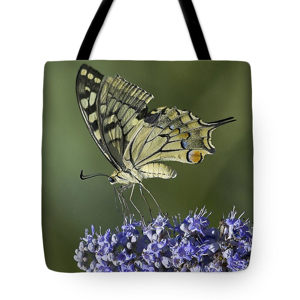 Butterfly Tote Bag featuring the photograph Butterfly 020 by Ingrid Smith-Johnsen