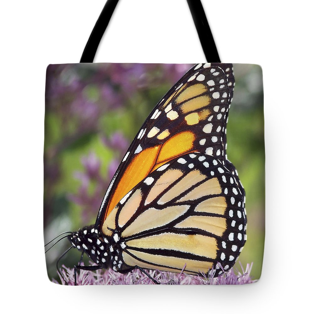 Monarch Tote Bag featuring the photograph Butterfly 024 by Ingrid Smith-Johnsen