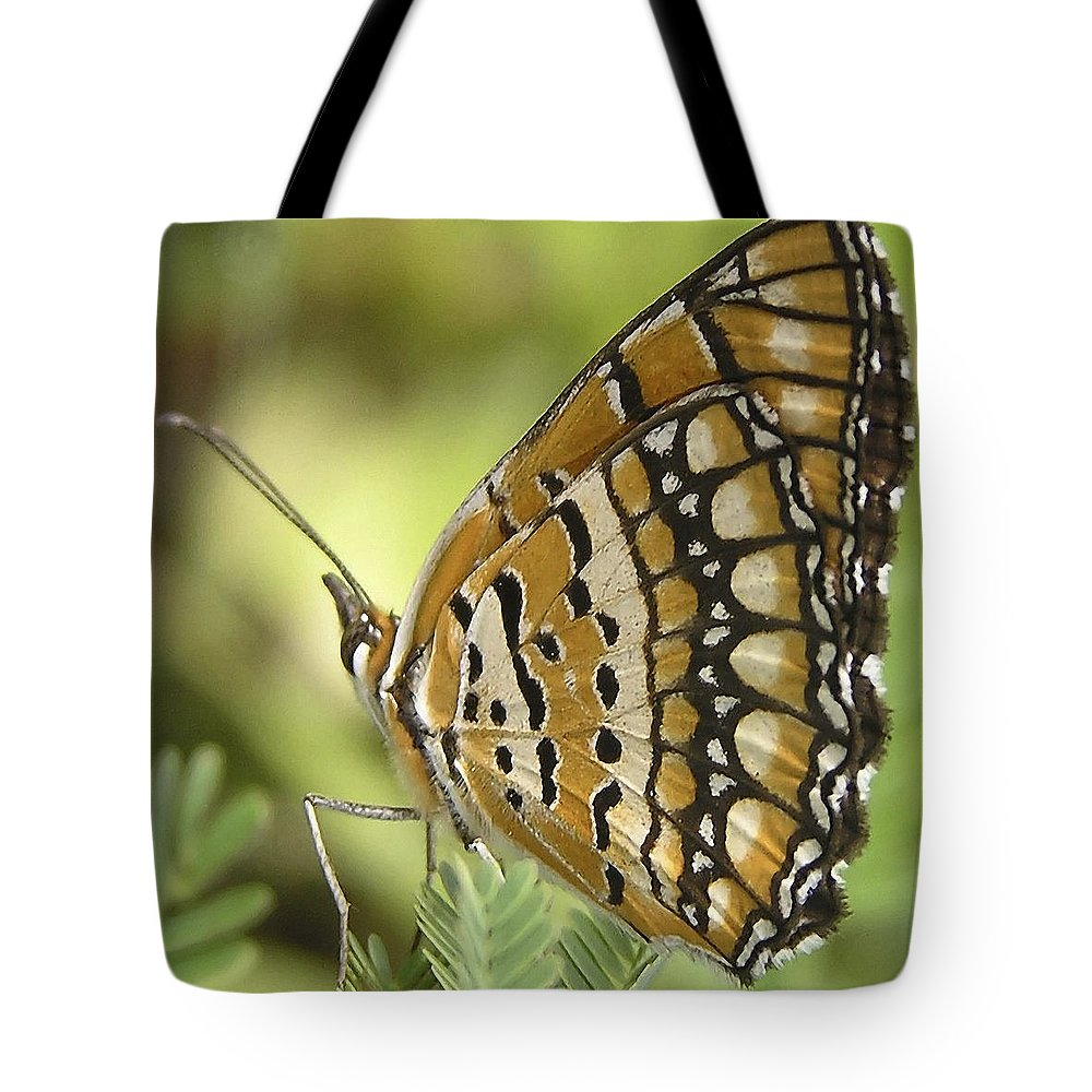 Butterfly Tote Bag featuring the photograph Butterfly 18 by Ingrid Smith-Johnsen