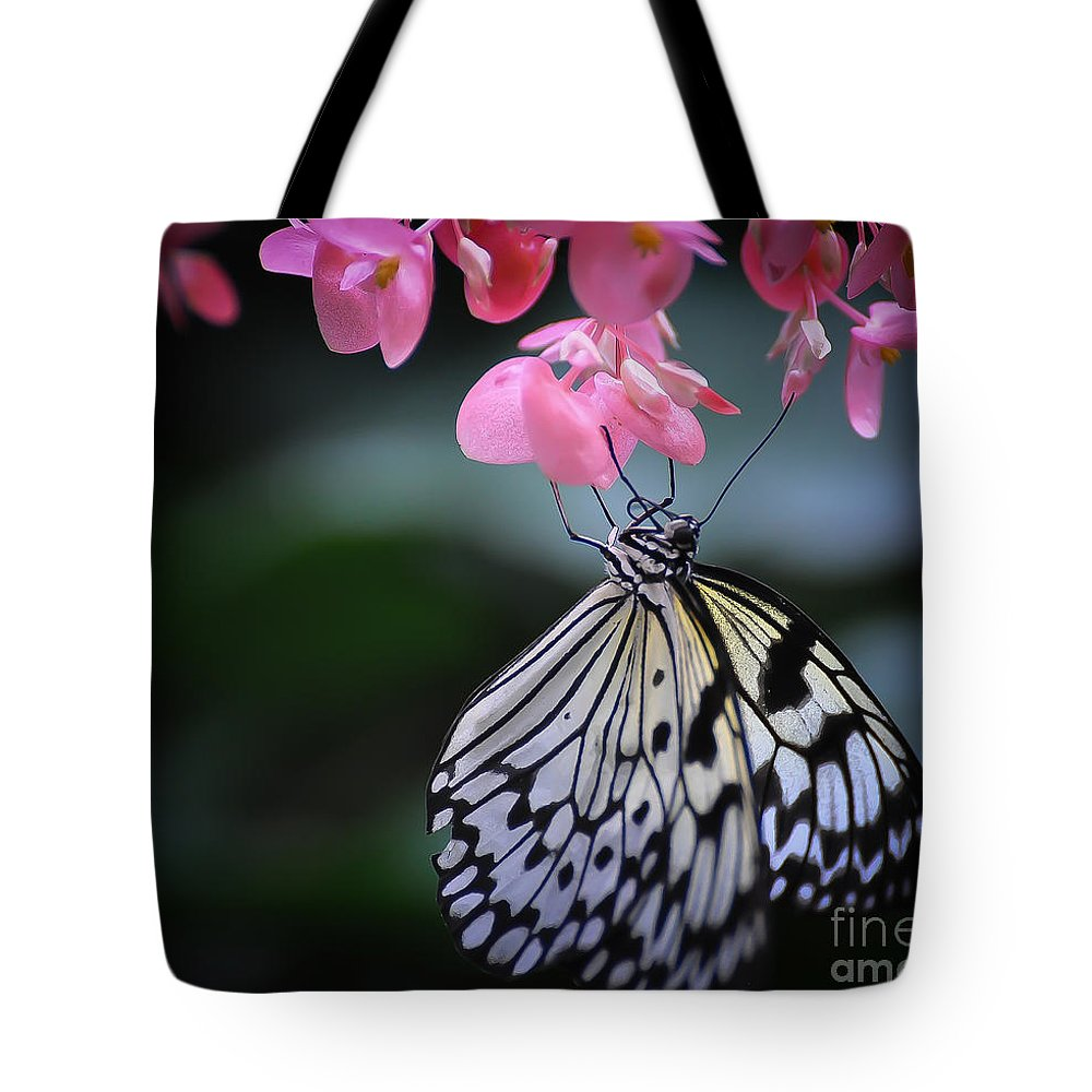 Butterfly Tote Bag featuring the photograph Butterfly And Blossoms by Bianca Nadeau