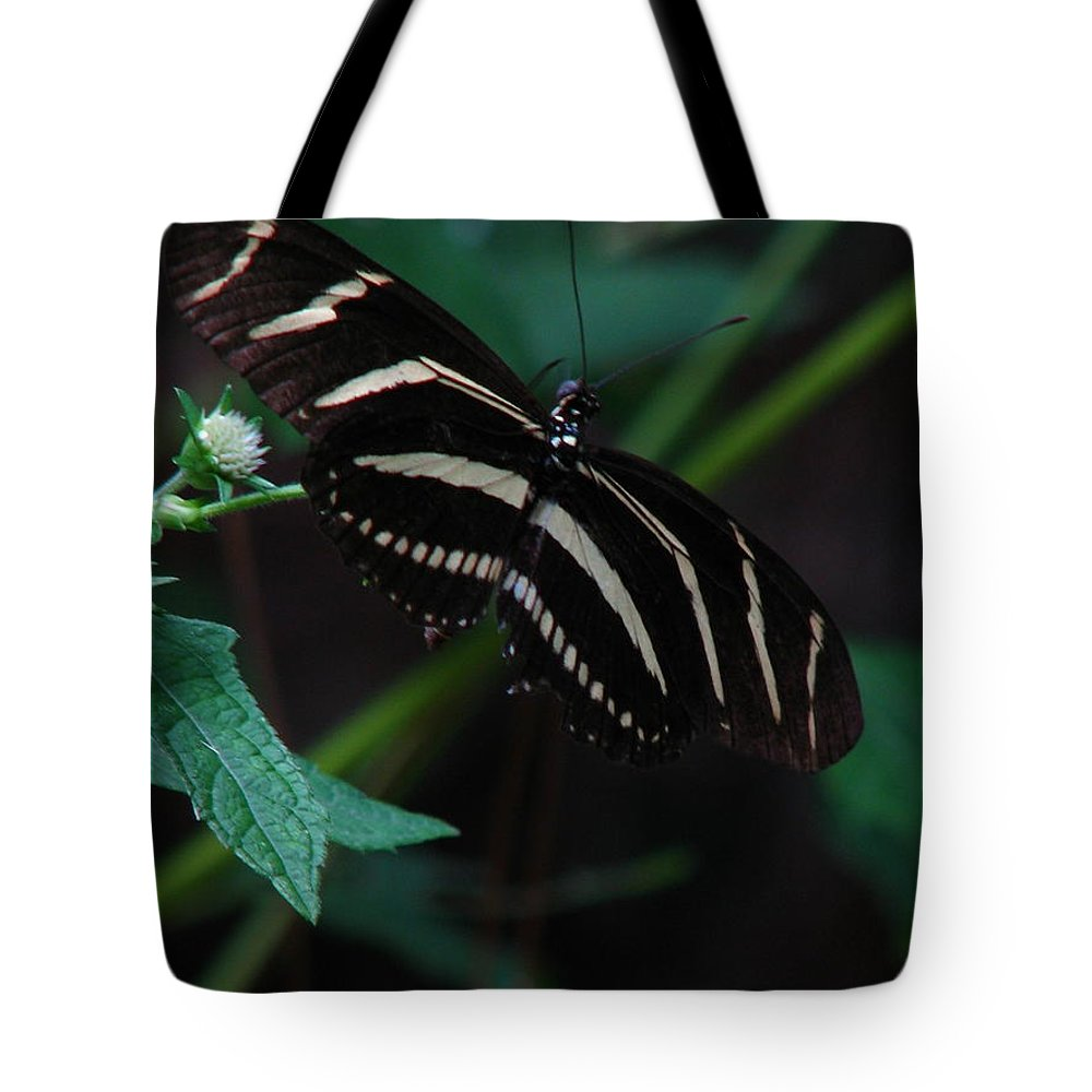 Art For The Wall...patzer Photography Tote Bag featuring the photograph Butterfly Art 2 by Greg Patzer