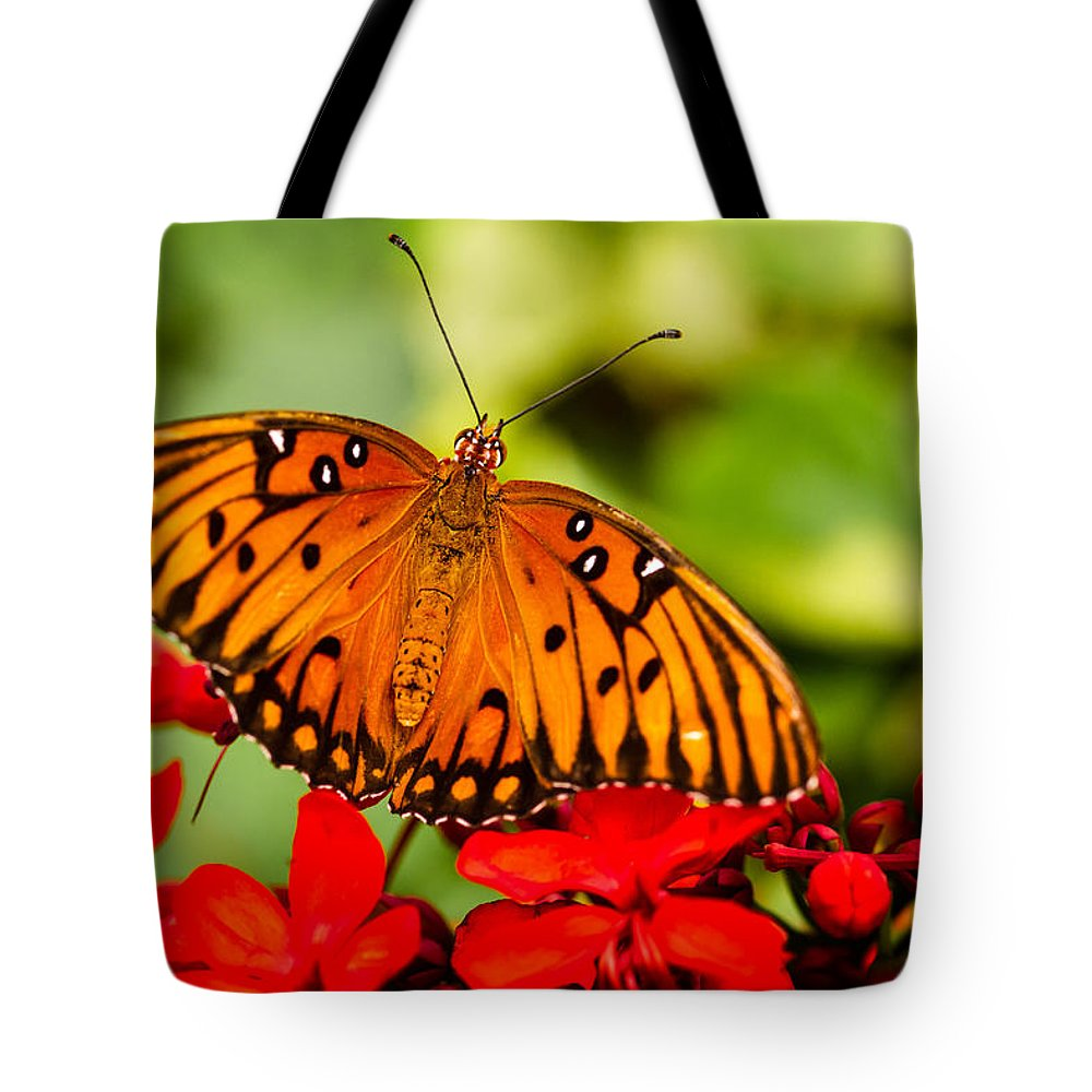 Animal Tote Bag featuring the photograph Butterfly Beauty by Teri Virbickis