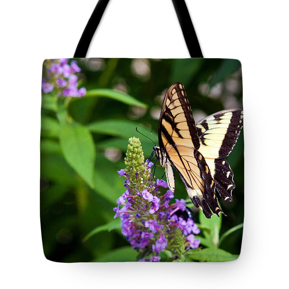Butterfly Tote Bag featuring the photograph Butterfly Garden 2 by Sennie Pierson