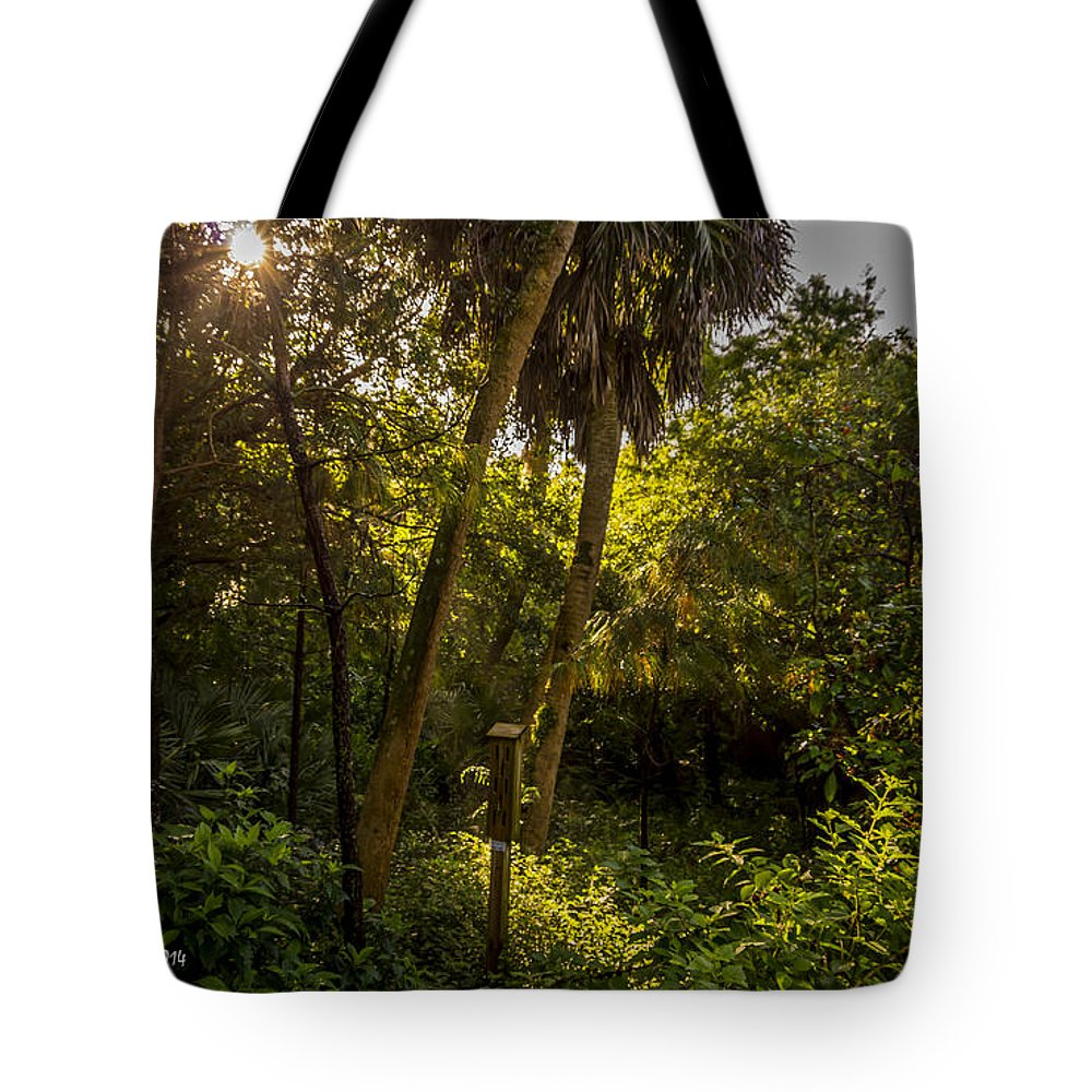 Boynton Beach Tote Bag featuring the photograph Butterfly House by Nancy L Marshall