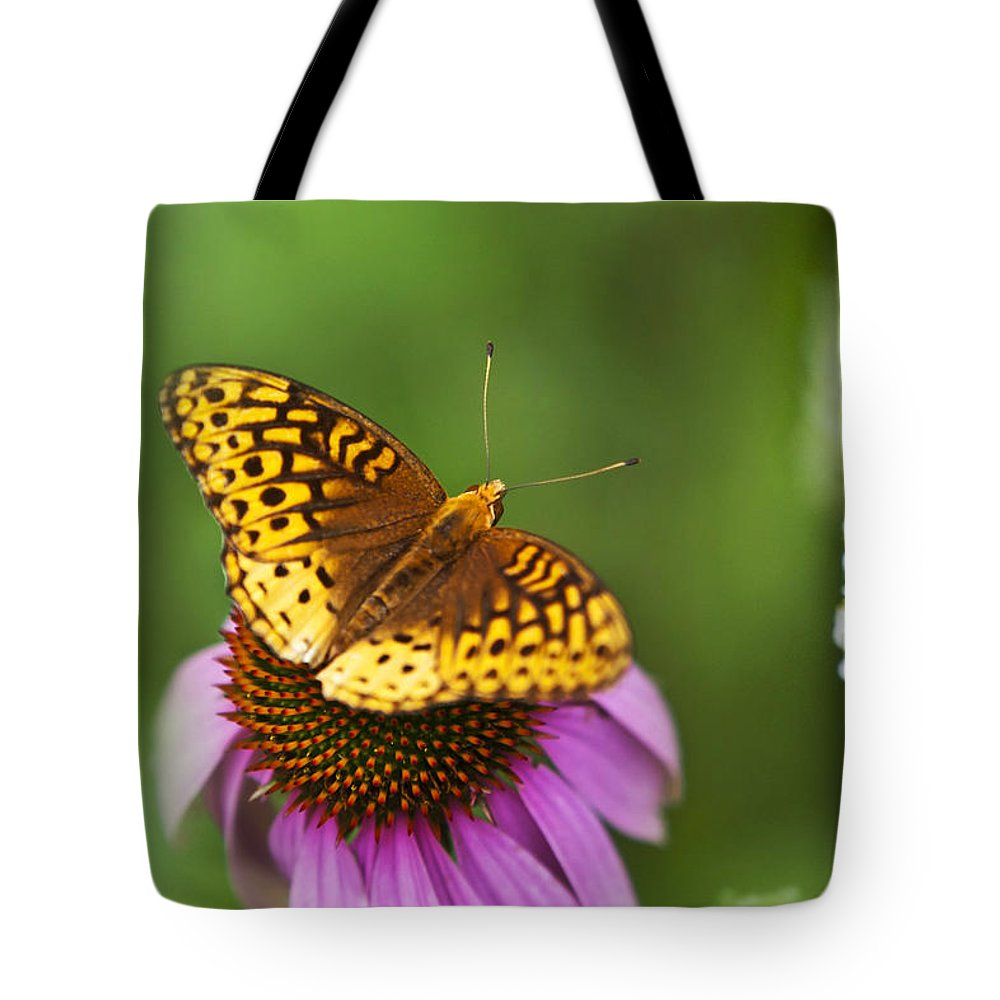 Butterfly Tote Bag featuring the photograph Butterfly Love by Christina Rollo