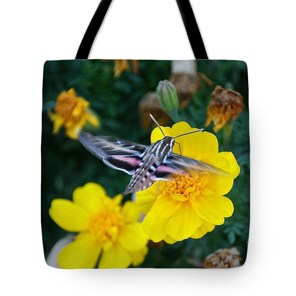 Outdoors Tote Bag featuring the photograph Butterfly Moth by Susan Herber