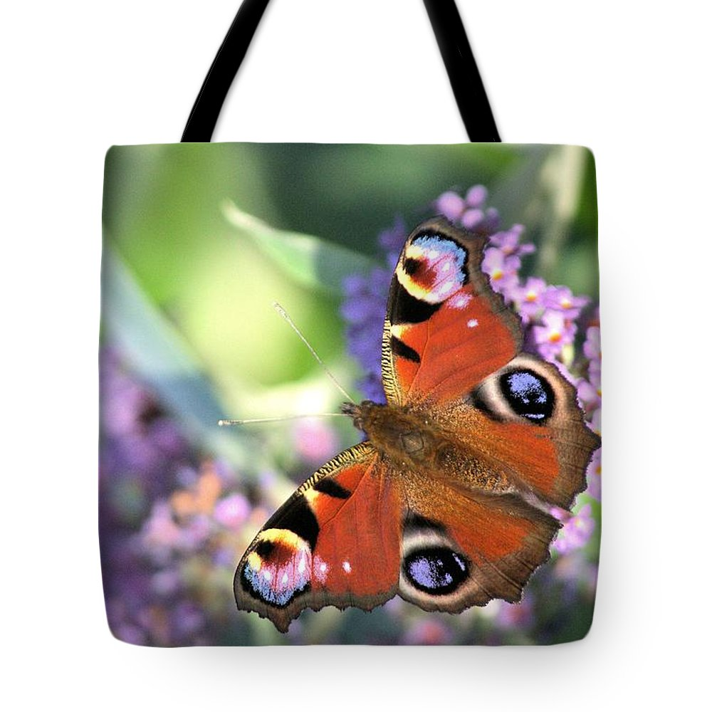 Butterfly Tote Bag featuring the photograph Butterfly On Buddleia by Gordon Auld