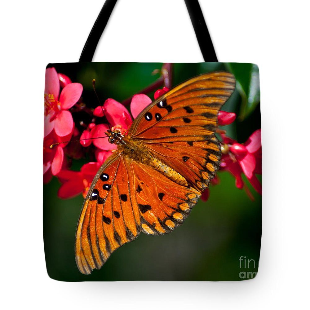 Butterfly Tote Bag featuring the photograph Butterfly On Flower by Stephen Whalen