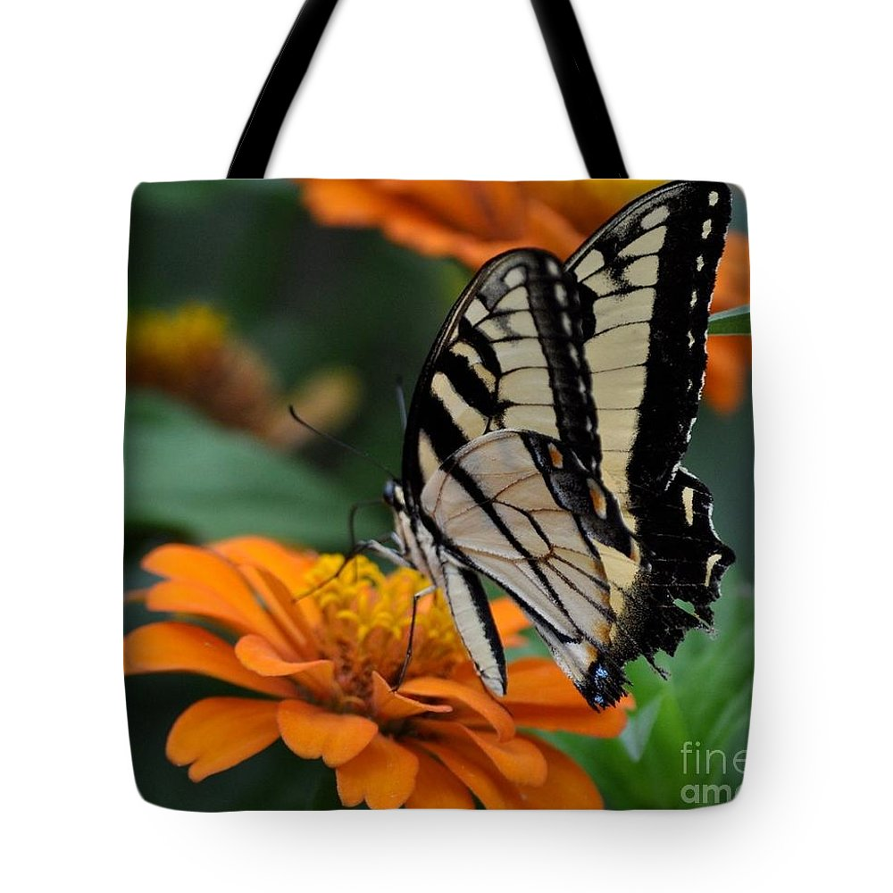 Butterfly Tote Bag featuring the photograph Butterfly On Zinnia by Kathy Flood