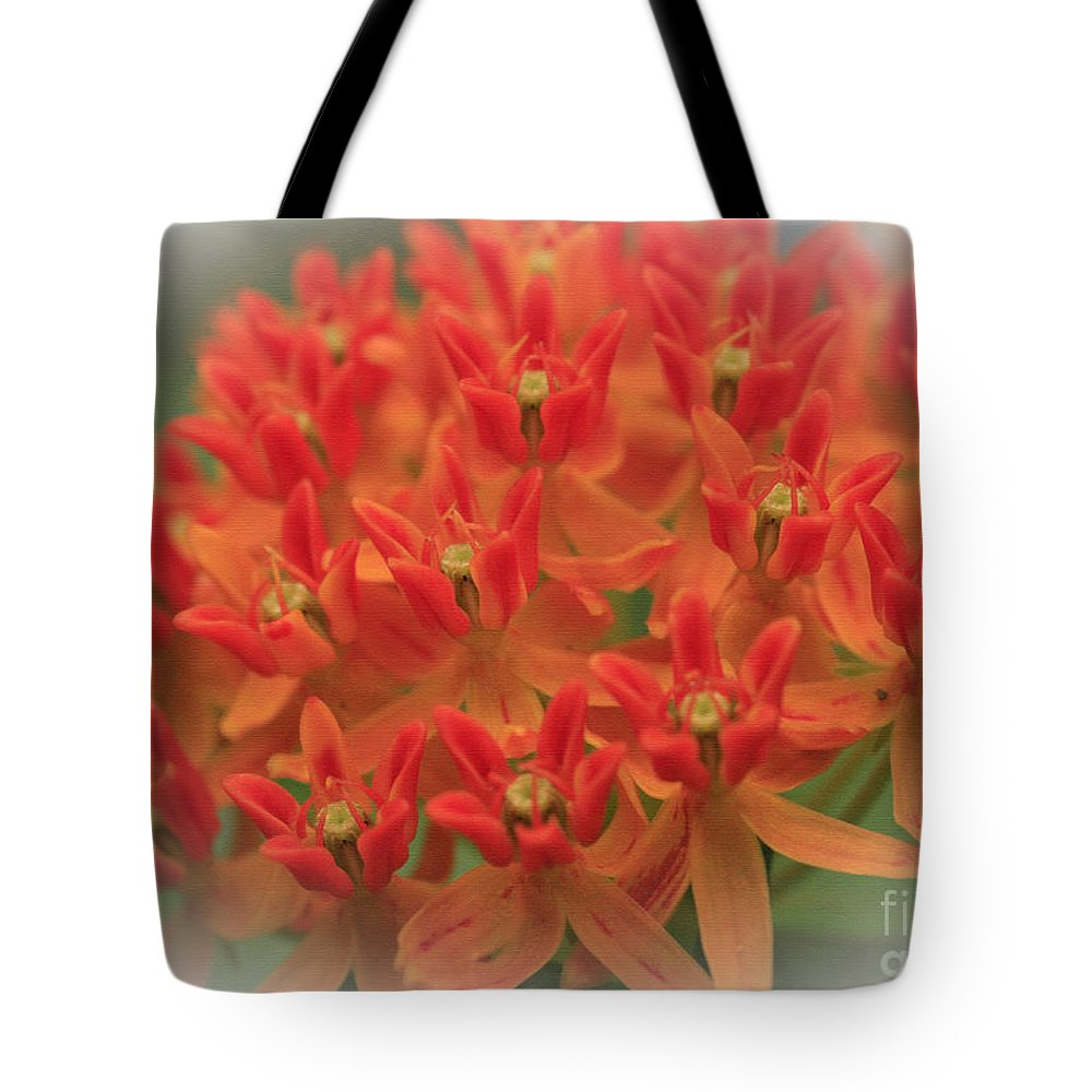 Flower Tote Bag featuring the photograph Butterfly Orange by Sandra Clark