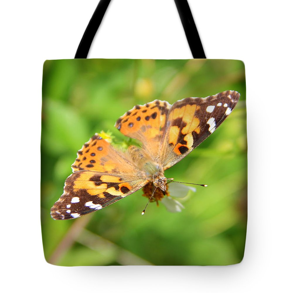 Nature Tote Bag featuring the photograph Butterfly Series 1 Of 5 by May Photography