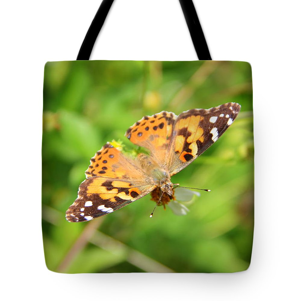 Nature Tote Bag featuring the photograph Butterfly Series 2 Of 5 by May Photography