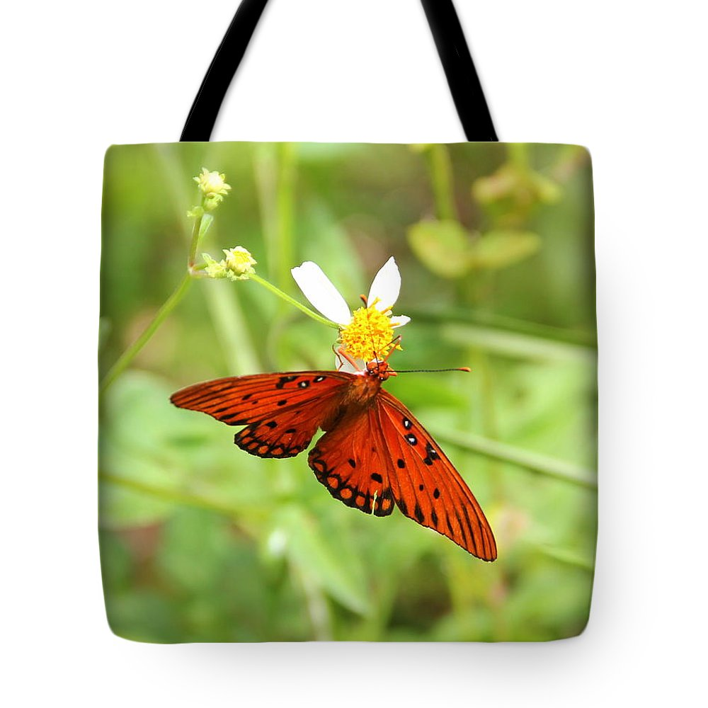 Nature Tote Bag featuring the photograph Butterfly Series 4 Of 5 by May Photography