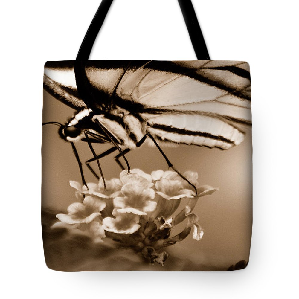 Butterfly Tote Bag featuring the photograph Butterfly Whisper by Lori Tambakis