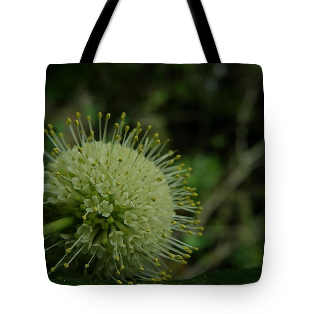 Plant Tote Bag featuring the photograph Buttonbush by Kimberly Mohlenhoff