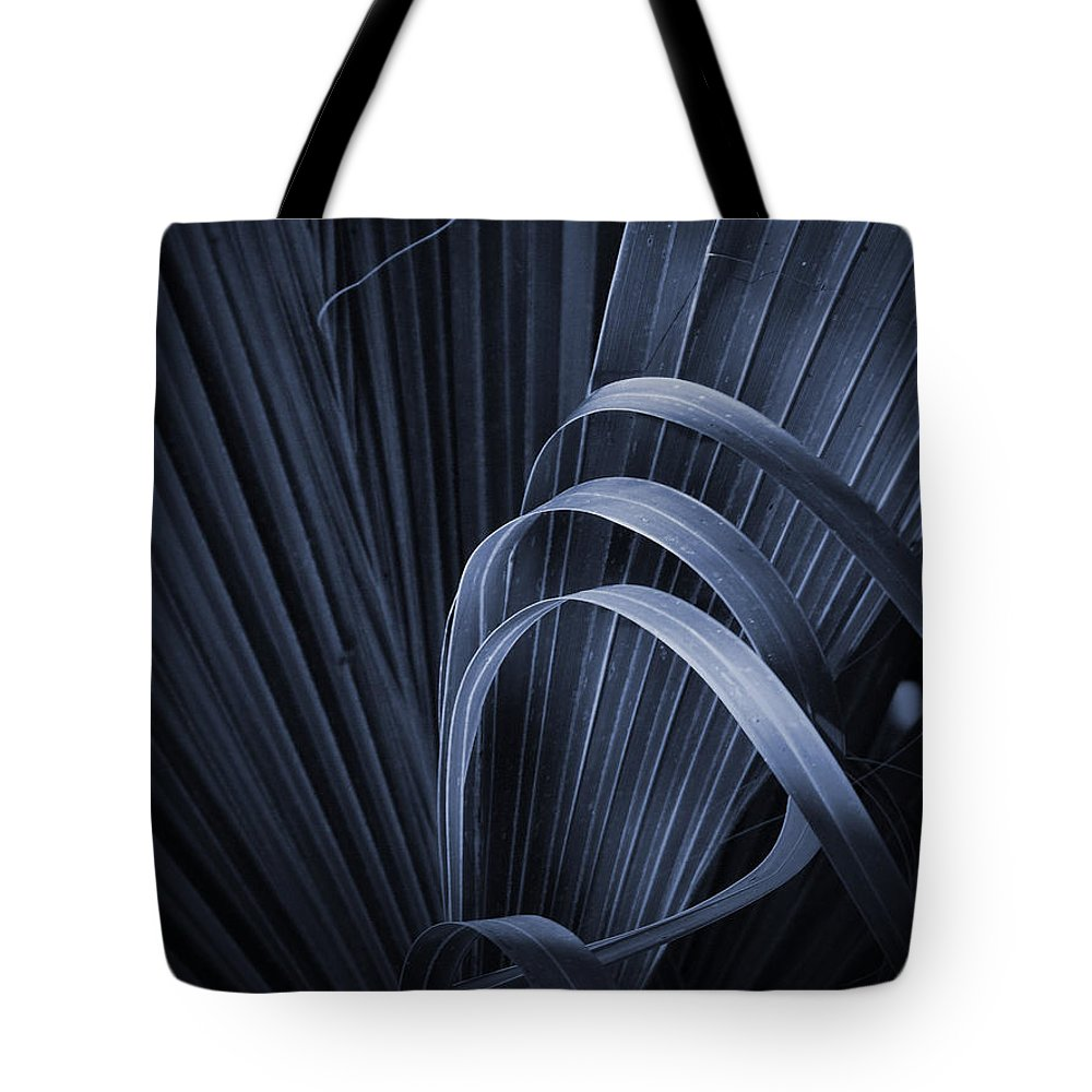 Phil Tote Bag featuring the photograph Cabbage Palm No. 3 by Phil Penne