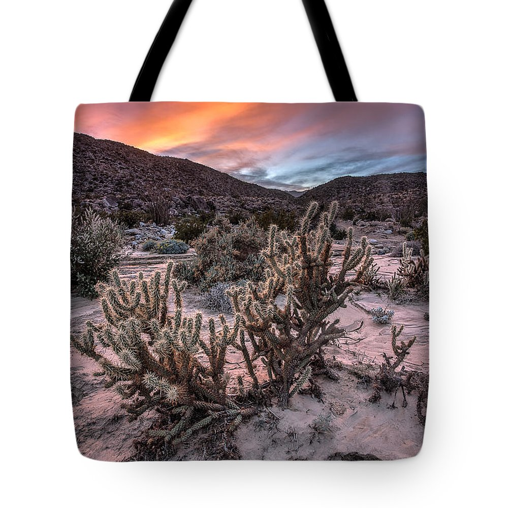 Anza-borrego Desert Tote Bag featuring the photograph Cac-dusk by Peter Tellone