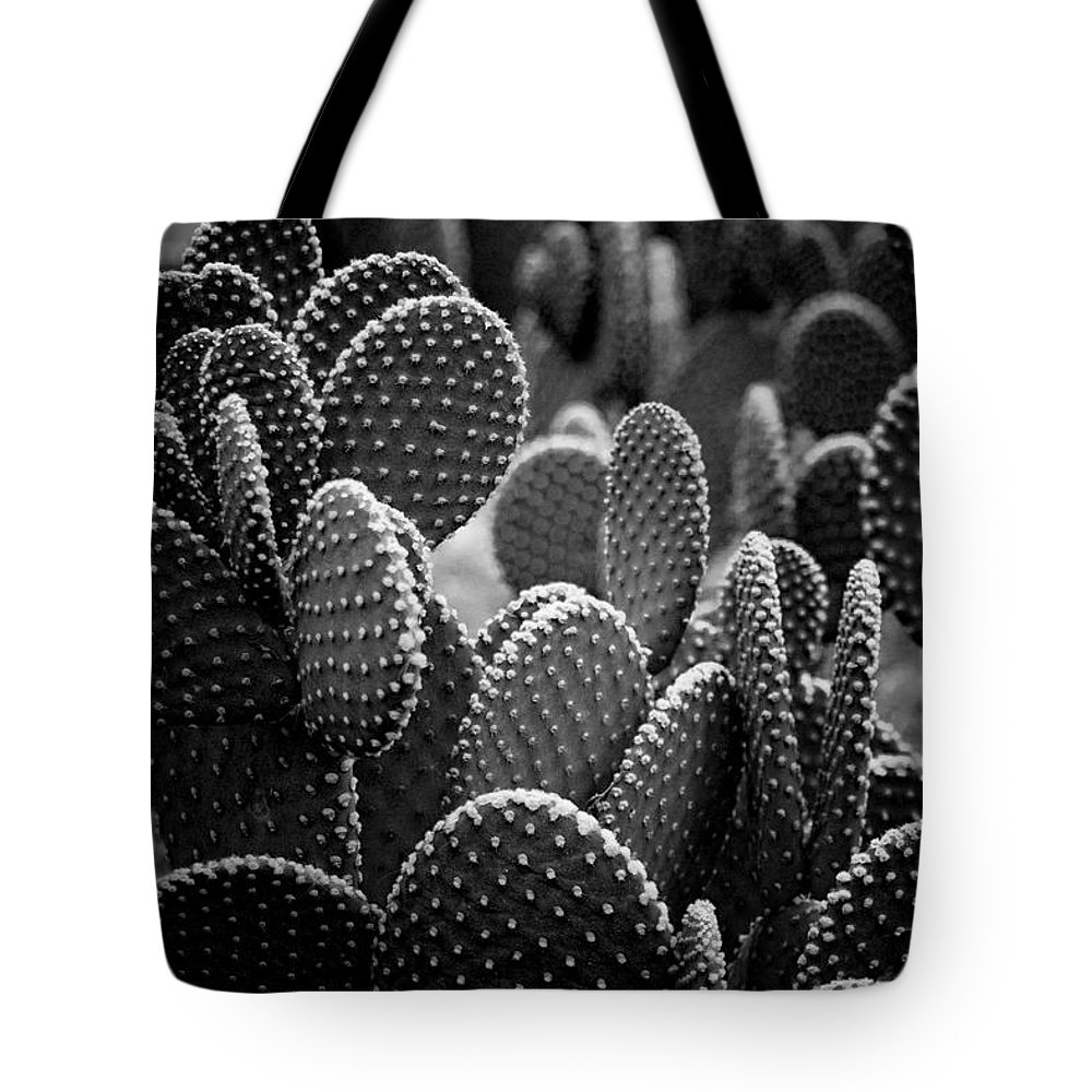 Botanicals Tote Bag featuring the photograph Cactus 5252 by Timothy Bischoff