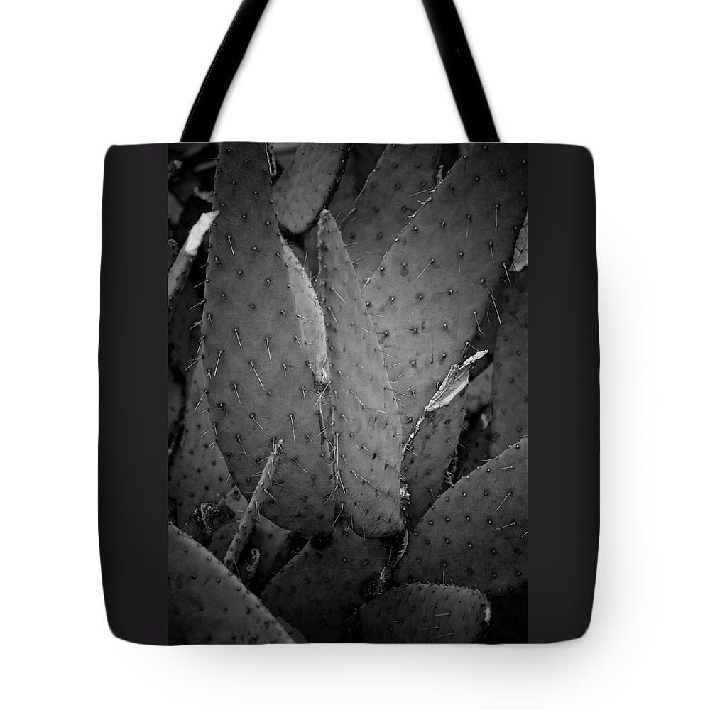 Botanicals Tote Bag featuring the photograph Cactus 5256 by Timothy Bischoff