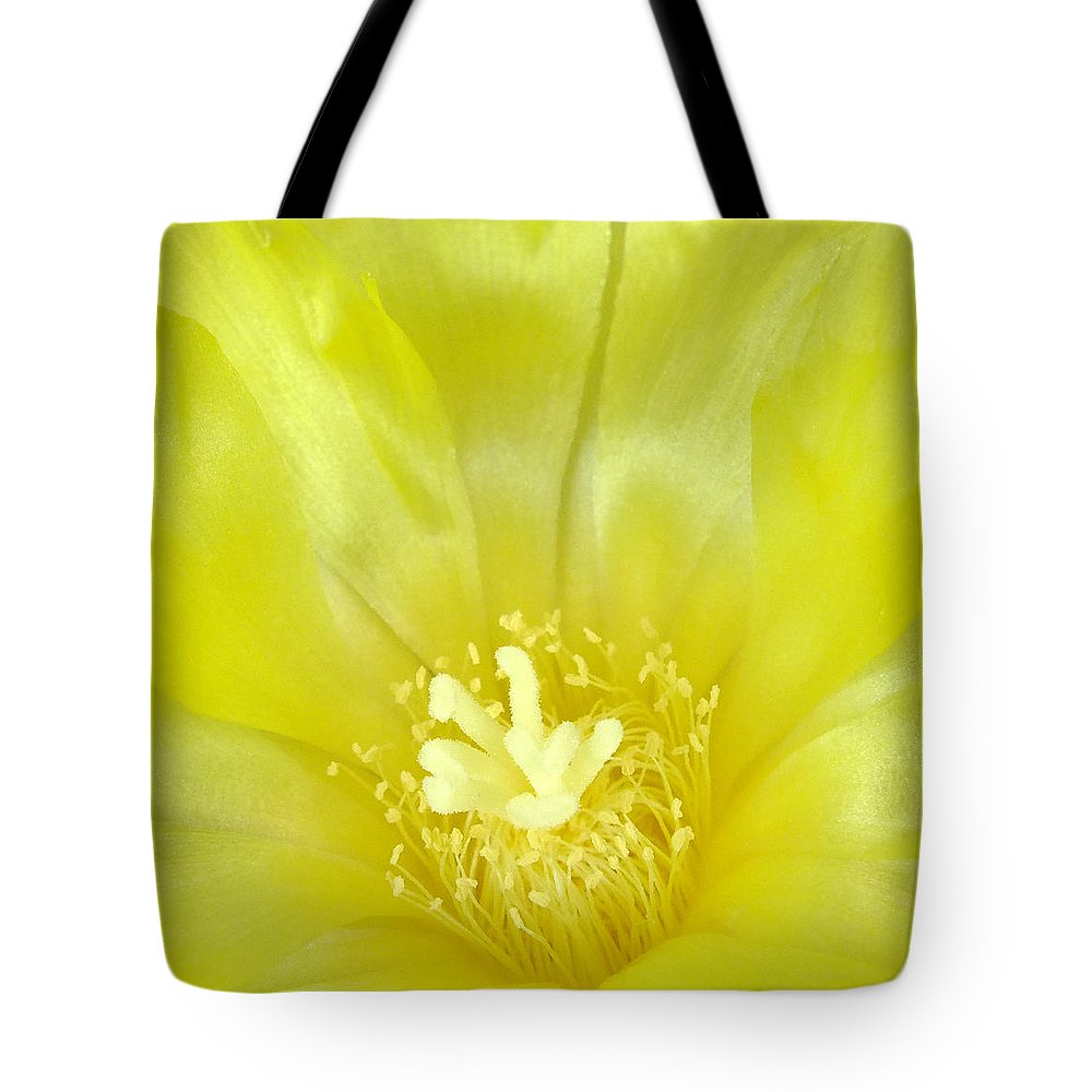 Cactus Bloom Tote Bag featuring the photograph Cactus Dance II by Bill Morgenstern