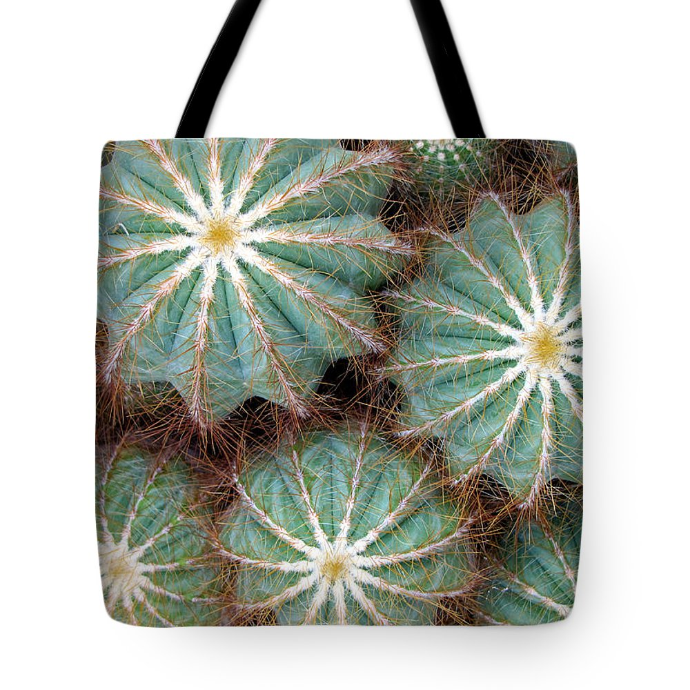 Duane Mccullough Tote Bag featuring the photograph Cactus Family 2 by Duane McCullough