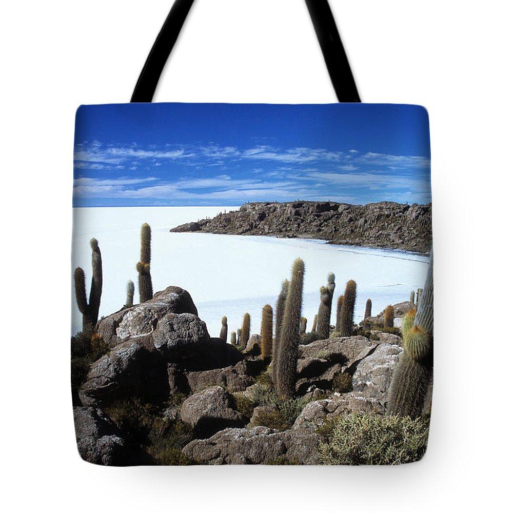 Salar De Uyuni Tote Bag featuring the photograph Cactus Forest And Salar De Uyuni by James Brunker