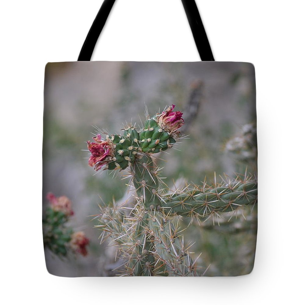 Cactus Tote Bag featuring the photograph Cactus by Janice Sanborn