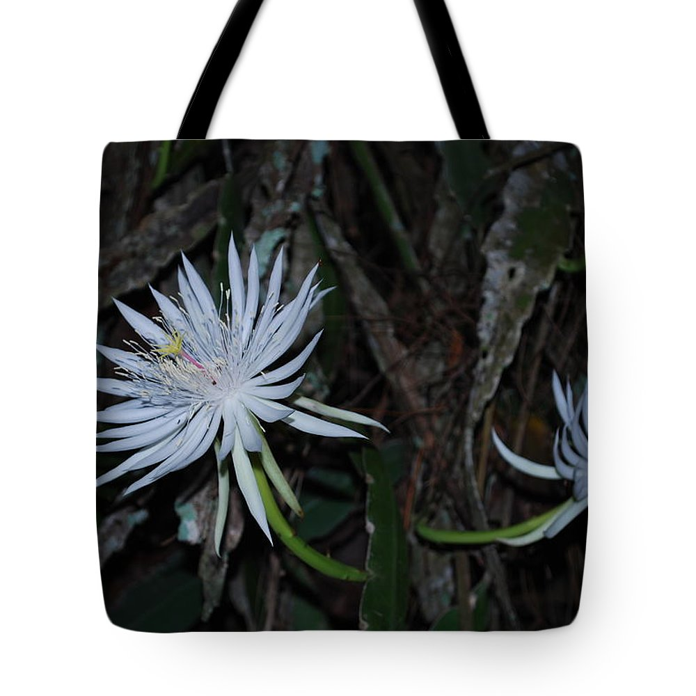 Nightbloomer Tote Bag featuring the photograph Cactus by Robert Floyd