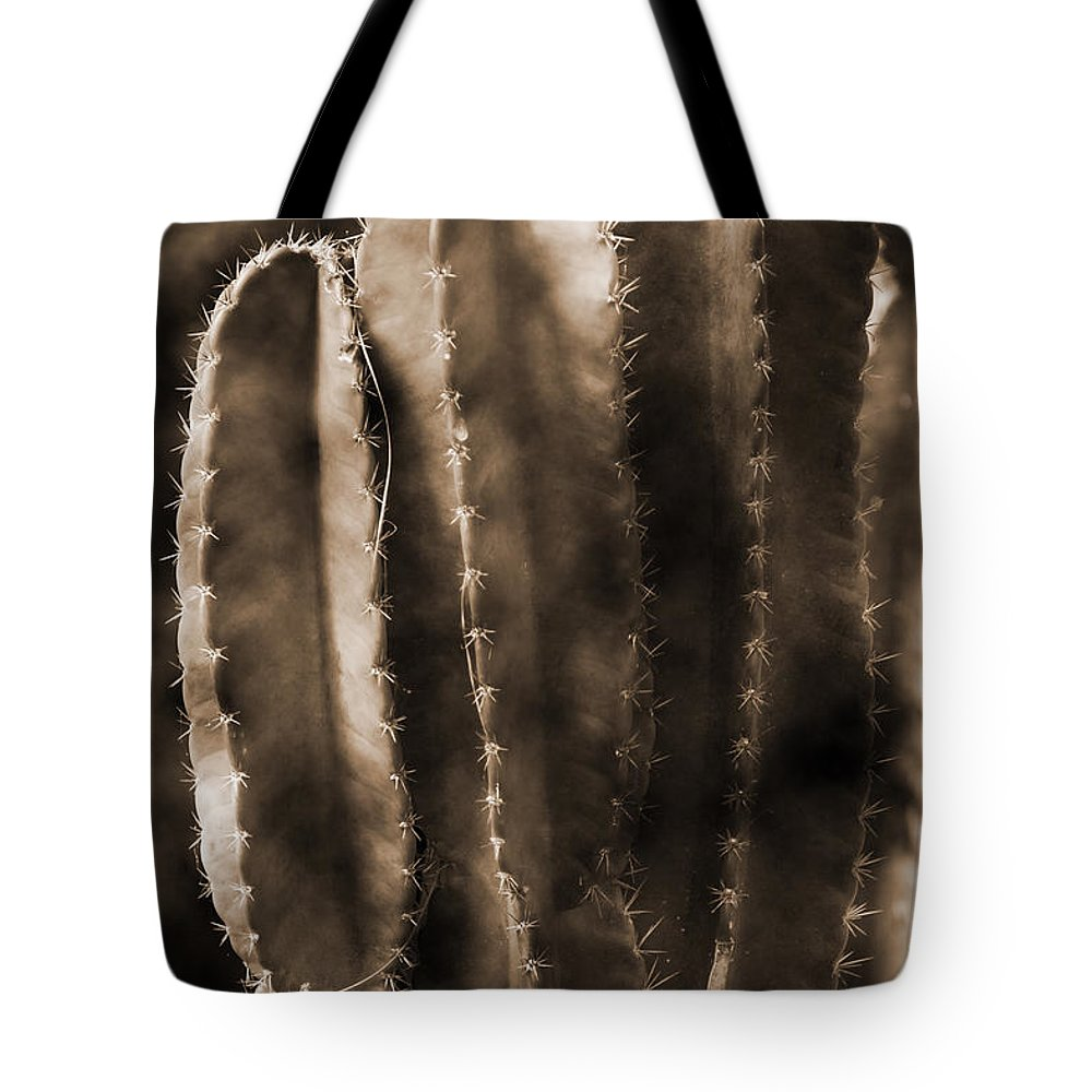 Panama Tote Bag featuring the photograph Cactus Sepia Tone Panama by Greg Kluempers