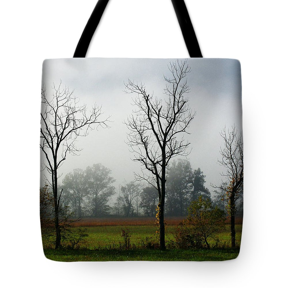 Tote Bag featuring the photograph Cades Cove Gsmnp IIi by Douglas Stucky