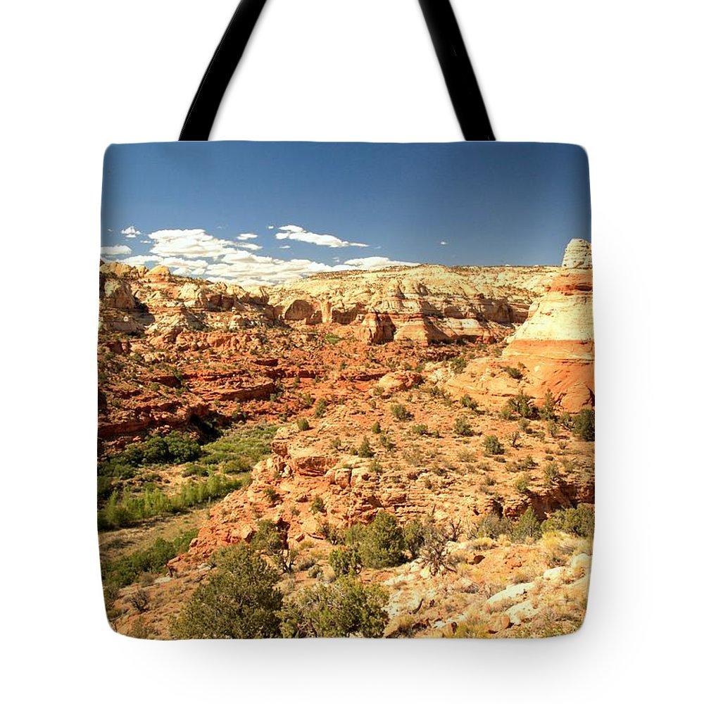 Calf Creek Falls Tote Bag featuring the photograph Calf Creek View by Adam Jewell