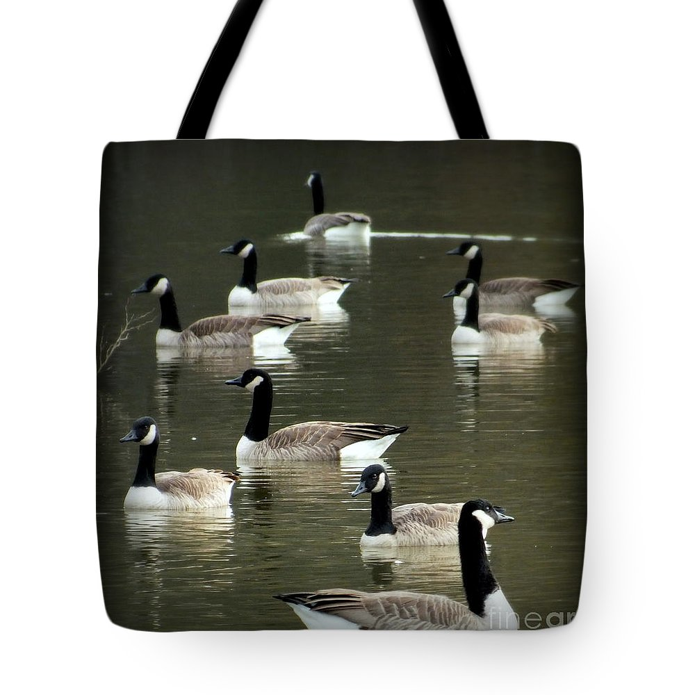 Waterscapes Tote Bag featuring the photograph Calm Waters by Karen Wiles