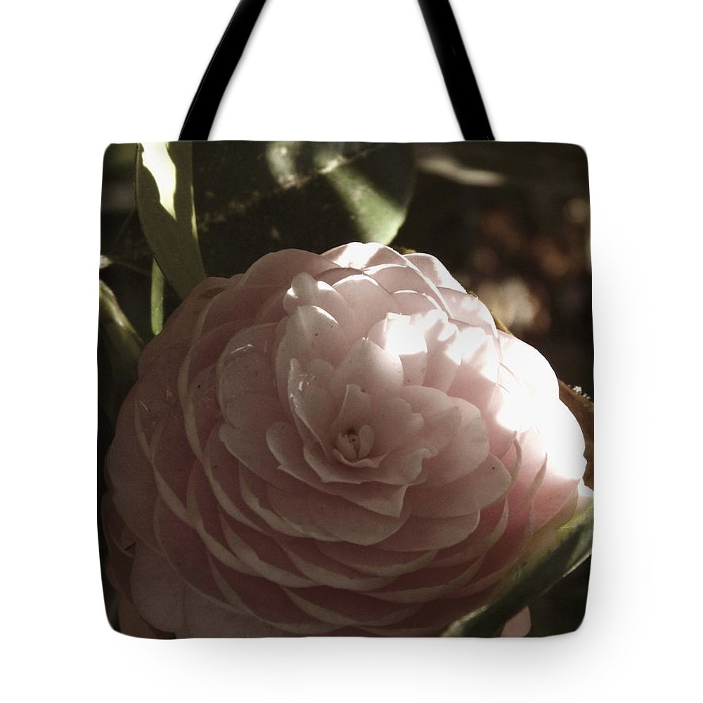Camellia Tote Bag featuring the photograph Camellia 2 by Andrea Anderegg