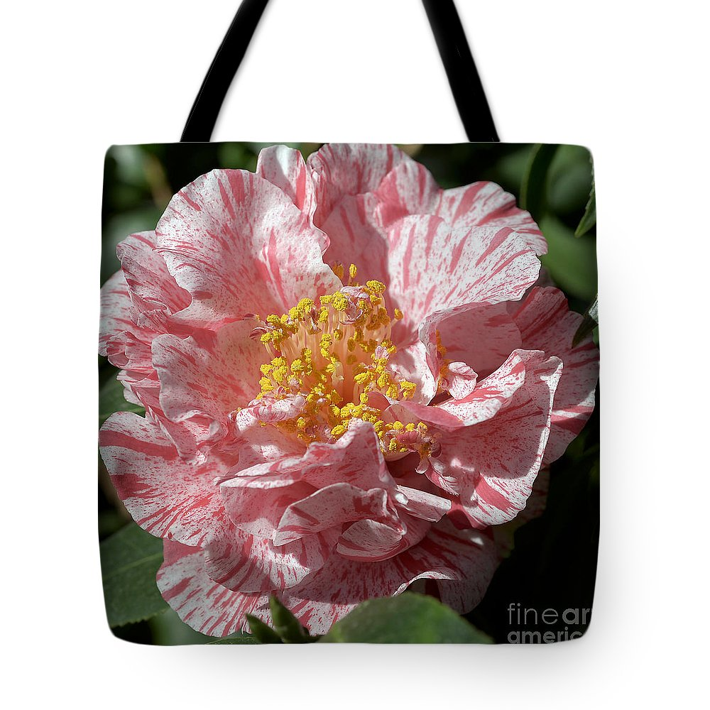 Camellia Tote Bag featuring the photograph Camellia 2967 by Terri Winkler