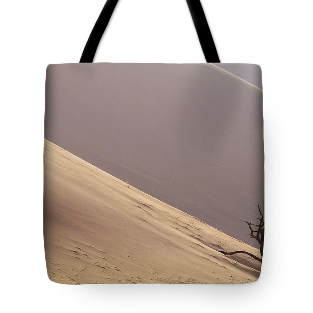 Acacia Tote Bag featuring the photograph Camelthorn Alhagi Maurorum In Sand Dune by Gerry Ellis