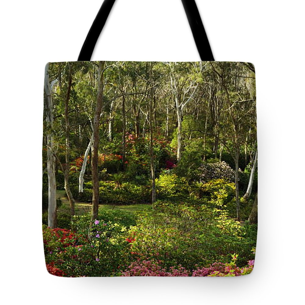 Azaleas Tote Bag featuring the photograph Campbell Rhododendron Gardens 2am 6831-6832 Panorama by Andrew McInnes