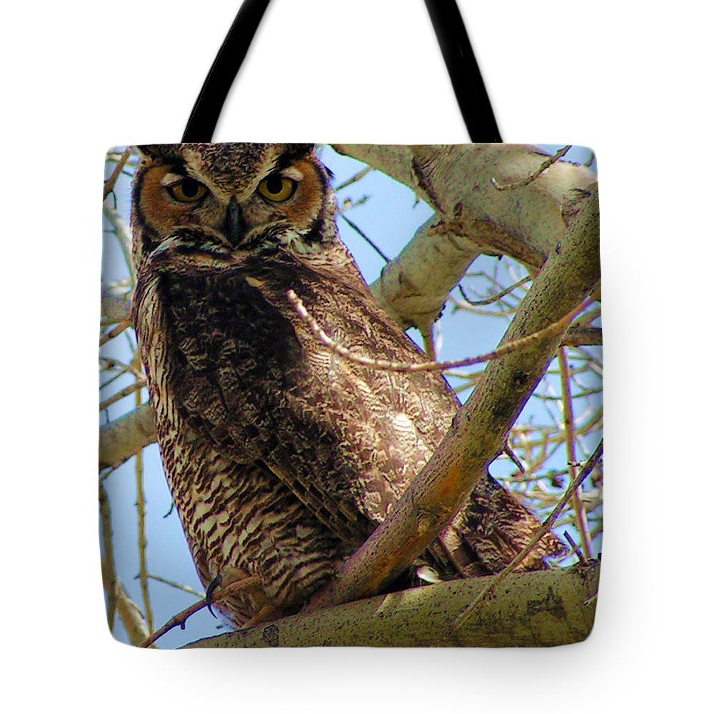 Owl Tote Bag featuring the digital art Campus Owl by Renee Doehrel Rhodehamel