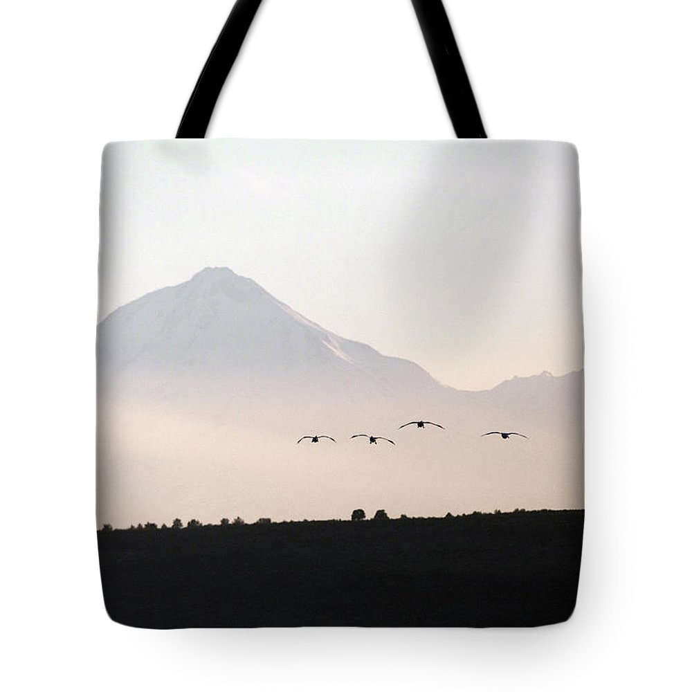 Alertness Tote Bag featuring the photograph Canada Geese Branta Canadensis Fly by Mike Kane