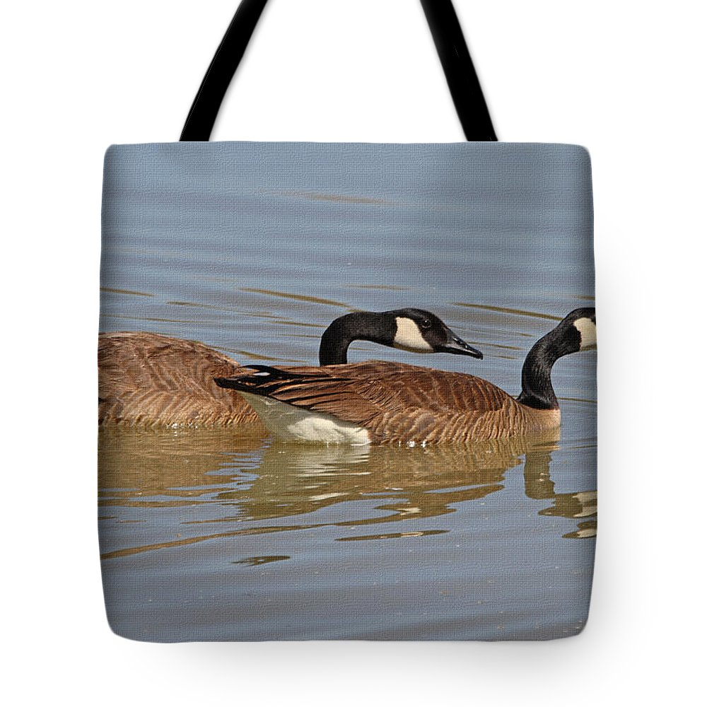 Canadian Geese Mates Tote Bag featuring the photograph Canadian Geese Mates by Tom Janca