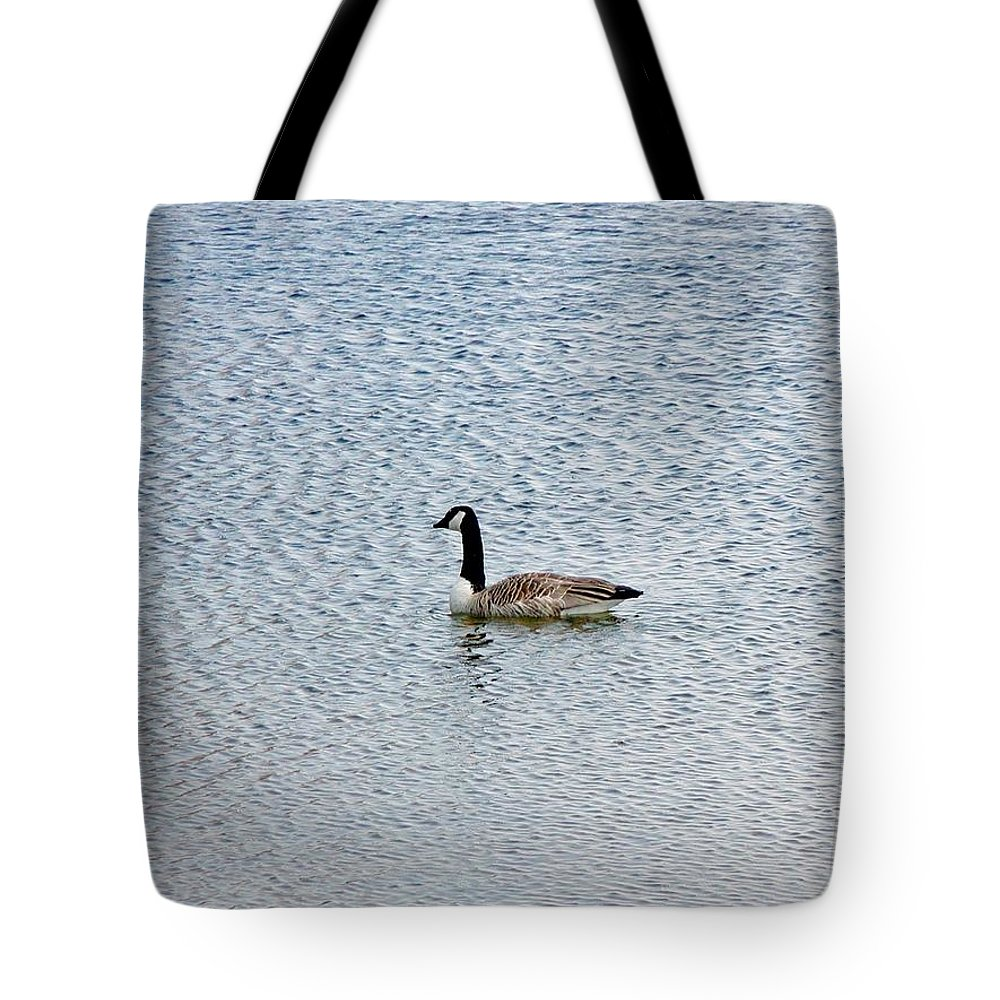 Fowl Tote Bag featuring the photograph Canadian Goose 2 by Scenic Sights By Tara