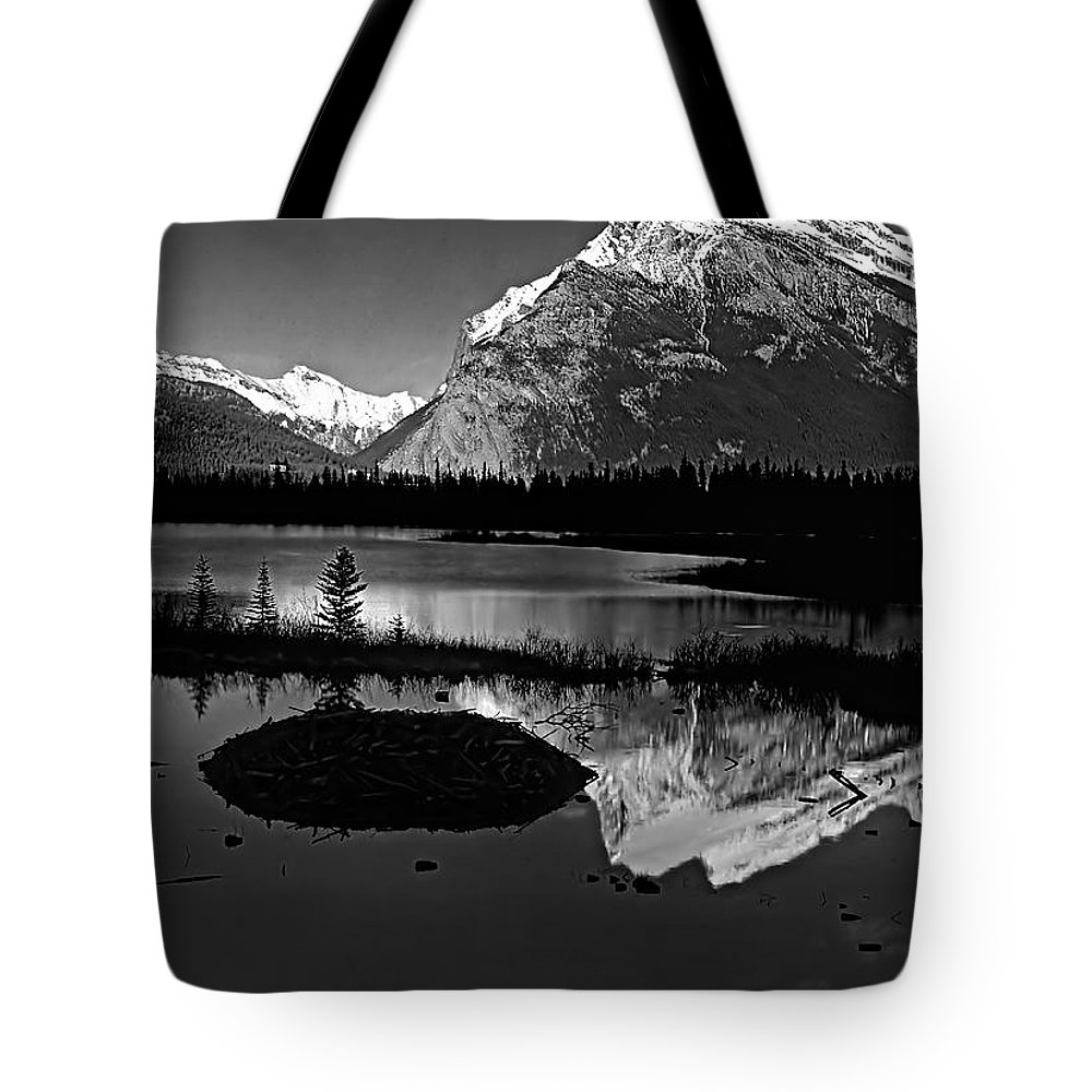 Mountains Tote Bag featuring the photograph Canadian Rockies by Steve Harrington