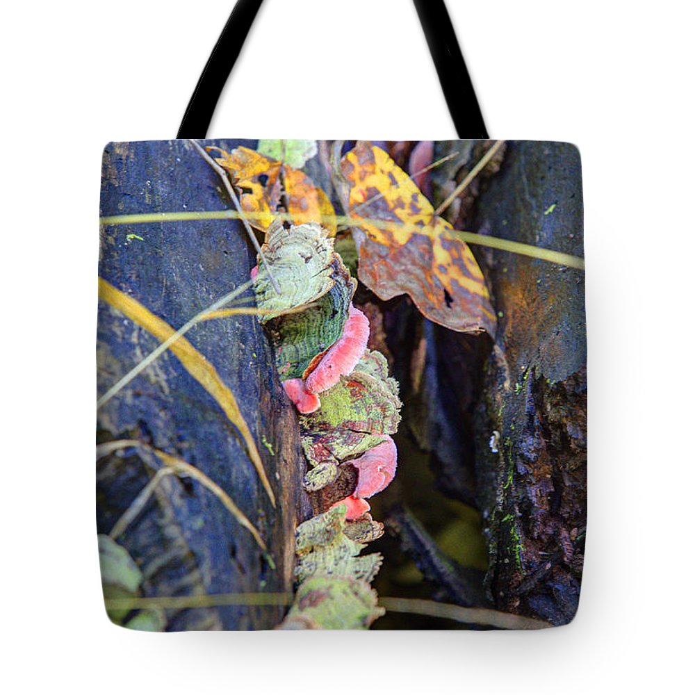 Trees Tote Bag featuring the photograph Candied Fungus by Alan Look