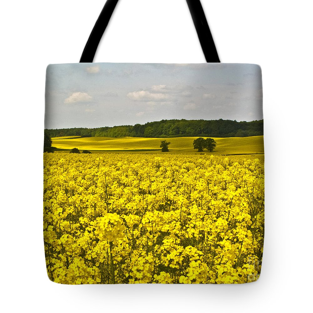 Spring Tote Bag featuring the photograph Canola Field by Heiko Koehrer-Wagner
