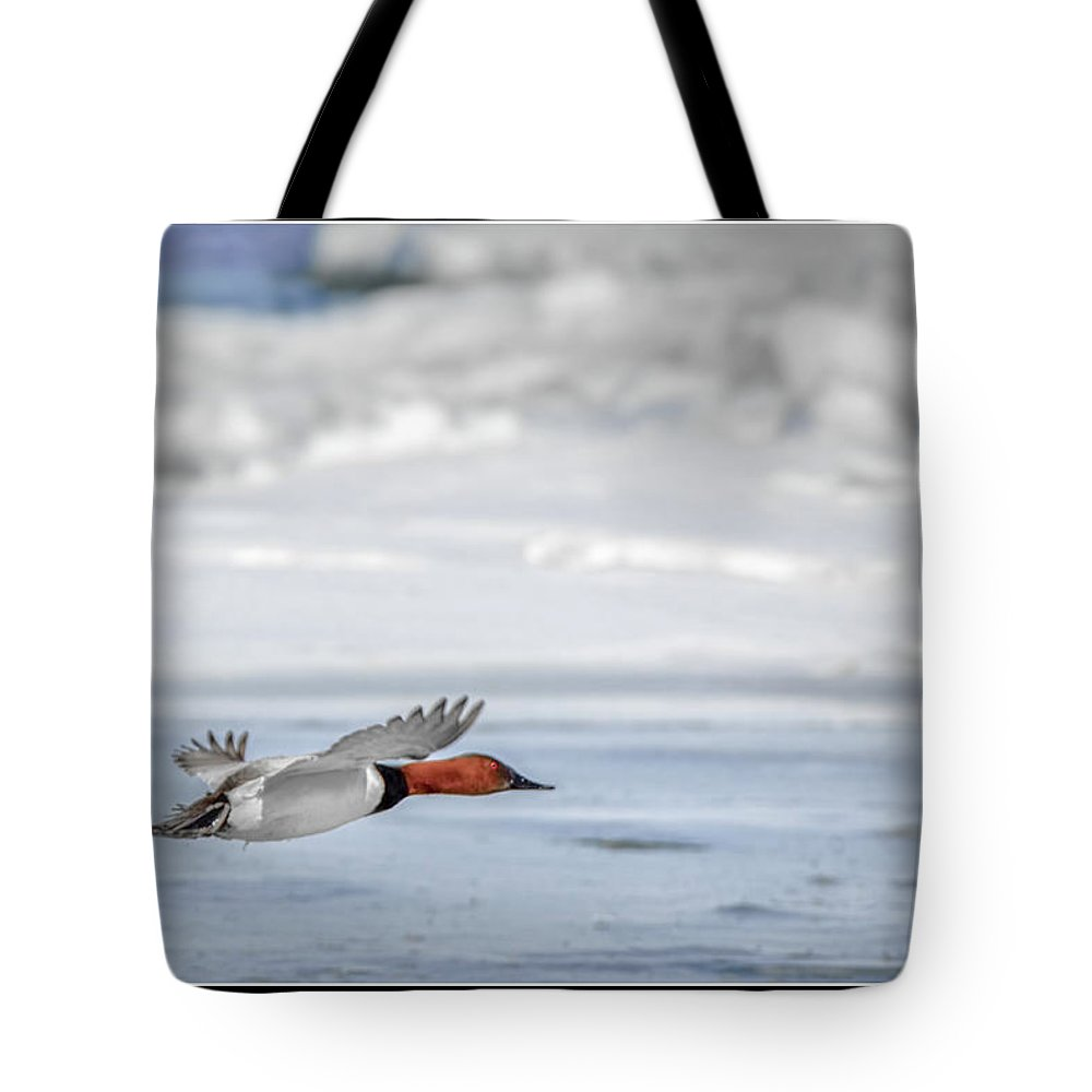 Canvasback Tote Bag featuring the photograph Canvasback Duck On Ice by LeeAnn McLaneGoetz McLaneGoetzStudioLLCcom