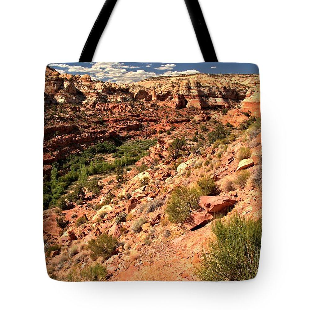 Calf Creek Falls Tote Bag featuring the photograph Canyon At Calf Creek by Adam Jewell